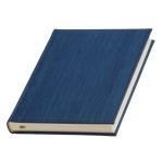 Ежедневник датированный «Альберго», цвет синий